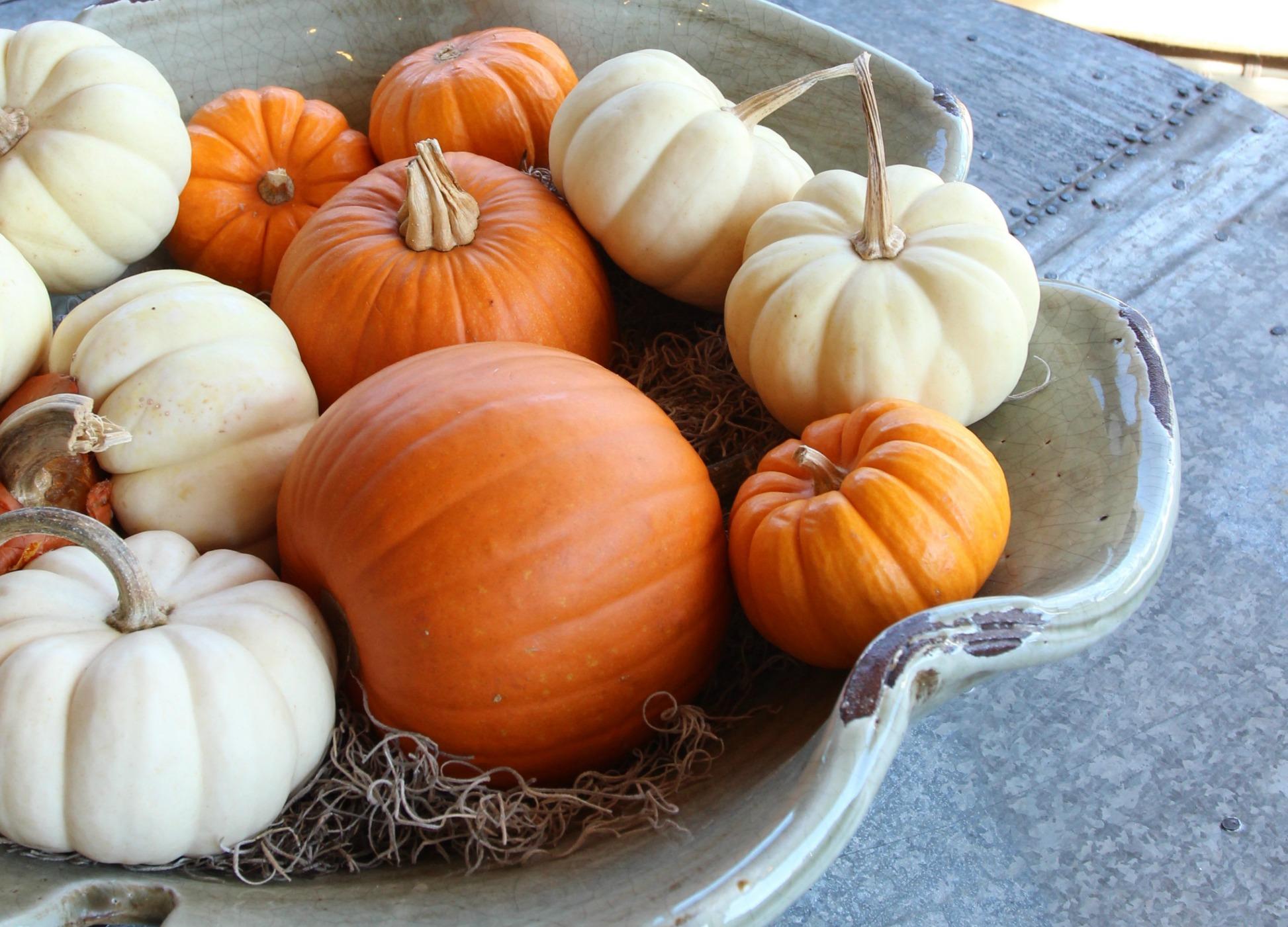 Easy Fall Decorating Ideas You will Love